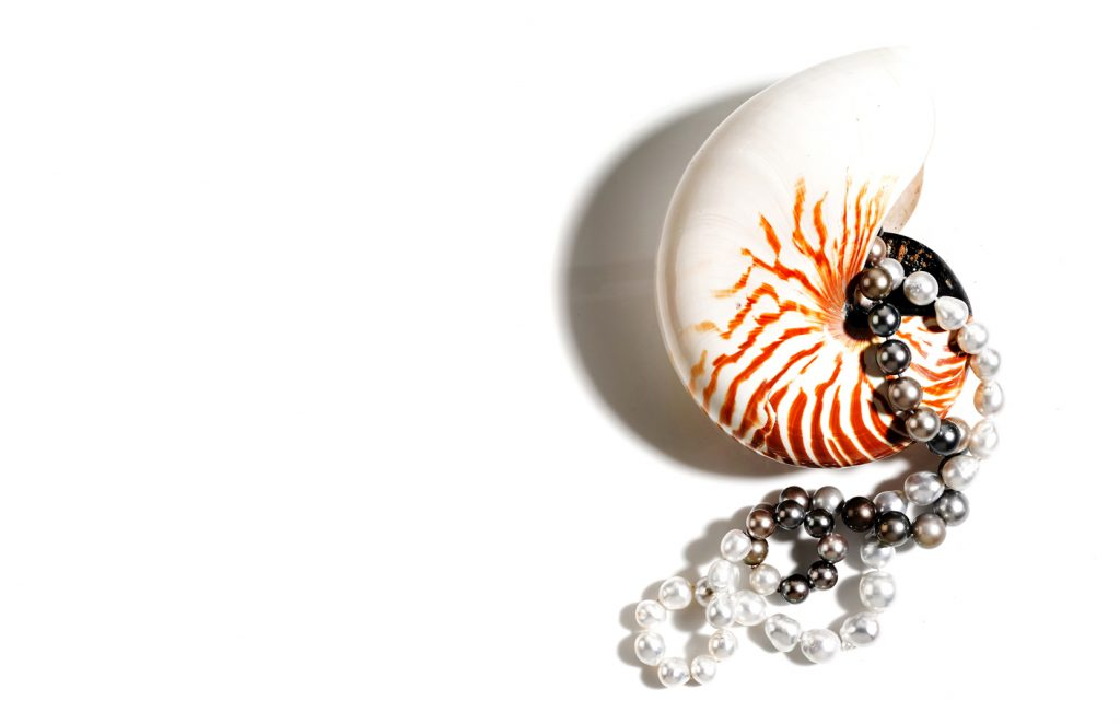 photography of pearls still life and flat lay jewellery photography