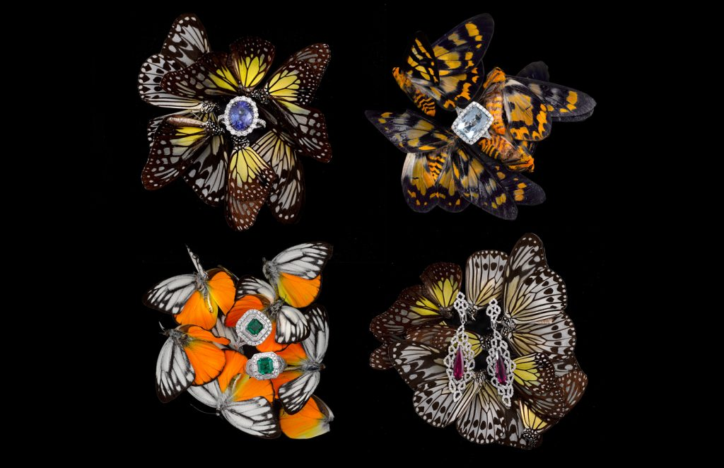 photography of rings on butterflies still life of gemstones and diamonds